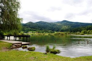 12210Podpesko_jezero_2_rszodpesko_jezero_2_rsz